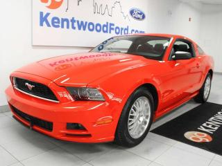 Used 2014 Ford Mustang V6, bright red and ready to set the road on fire for sale in Edmonton, AB