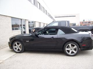 Used 2013 Ford Mustang GT for sale in Guelph, ON