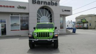 Used 2019 Jeep Wrangler UNLIMITED SPORT 4X4 *2TOIT / ENSEMBLE TE for sale in Napierville, QC
