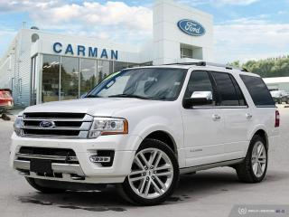 Used 2017 Ford Expedition for sale in Carman, MB