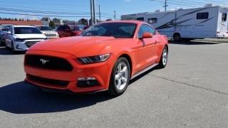 Used 2016 Ford Mustang V6 for sale in Mount Pearl, NL