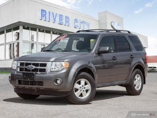 Used 2010 Ford Escape XLT for sale in Winnipeg, MB