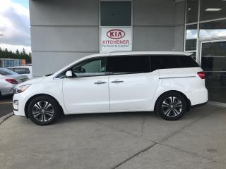 Used 2019 Kia Sedona SX for sale in Kitchener, ON