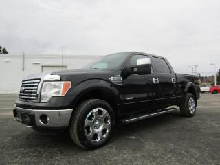 Used 2011 Ford F-150 Cabine SUPERCREW 4RM 157 po XLT for sale in Thetford Mines, QC