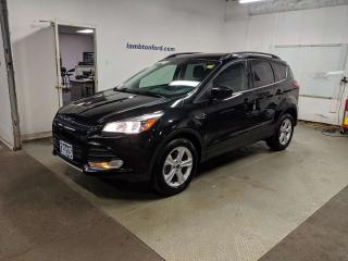 Used 2015 Ford Escape SE for sale in Sarnia, ON