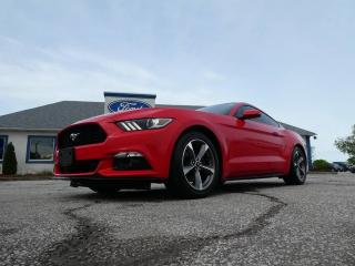 Used 2017 Ford Mustang EcoBoost Premium- LEATHER- MANUAL- FASTBACK for sale in Essex, ON