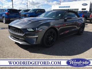 Used 2019 Ford Mustang EcoBoost for sale in Calgary, AB