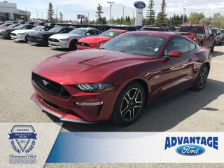 Used 2019 Ford Mustang GT One Owner - Clean Carfax for sale in Calgary, AB