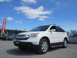 Used 2009 Honda CR-V 4WD EX-L / ACCIDENT FREE for sale in Newmarket, ON