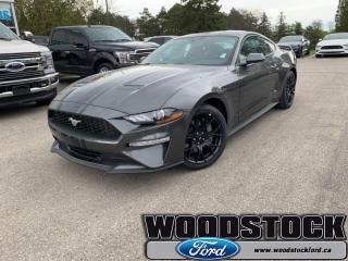 New 2019 Ford Mustang ECOBOOST  - Navigation -  Touch Screen for sale in Woodstock, ON