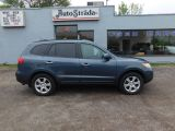 Photo of Blue 2007 Hyundai Santa Fe