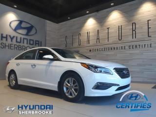 Used 2016 Hyundai Sonata GLS +TOIT+CAMERA+BANCS CHAUF+ANGLES-MORT for sale in Sherbrooke, QC