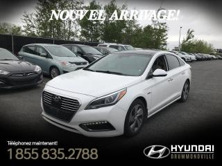 Used 2016 Hyundai Sonata Hybride LIMITED + NAVI + TOIT PANO + MAGS + WOW for sale in Drummondville, QC