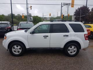 Used 2010 Ford Escape XLT 4X4 for sale in Kitchener, ON