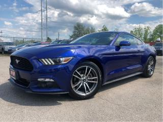 Used 2016 Ford Mustang Leather | Auto | HTD & Cooled Seats for sale in St Catharines, ON