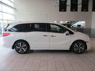 New 2019 Honda Odyssey Touring Navigation Remote Start Sunroof for sale in Red Deer, AB