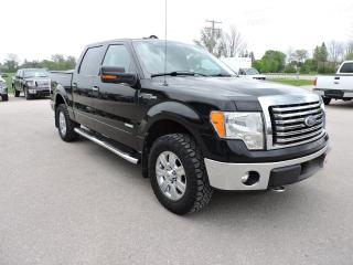 Used 2011 Ford F-150 XLT/XTR. V6 turbo. Only 160000 km's. Loaded for sale in Gorrie, ON