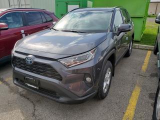 New 2019 Toyota RAV4 Hybrid XLE for sale in Etobicoke, ON