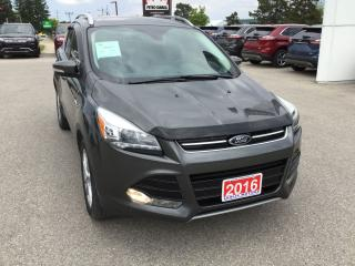 Used 2016 Ford Escape Titanium   4WD   One Owner   Navigation for sale in Harriston, ON