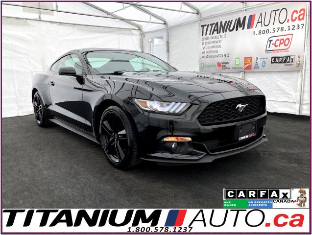 2015 Ford Mustang Performance PKG+GPS+Camera+Vent Leather+Blind Spot