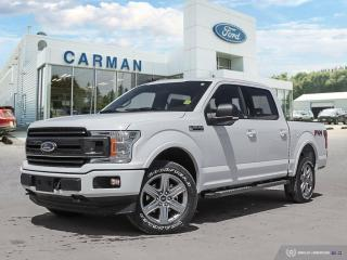 New 2019 Ford F-150 XLT for sale in Carman, MB