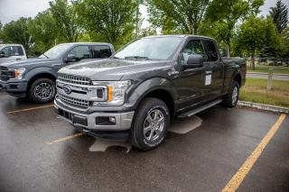 New 2019 Ford F-150 XLT for sale in Okotoks, AB