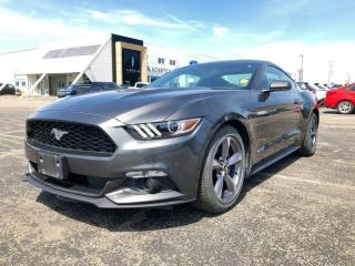 Used 2017 Ford Mustang V6 for sale in Orangeville, ON