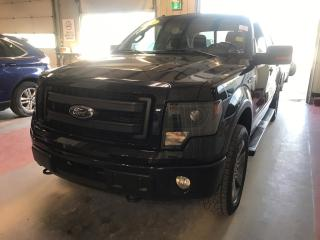 Used 2014 Ford F-150 for sale in Winnipeg, MB