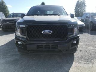 Used 2019 Ford F-150 XLT cabine SuperCrew 4RM boite de 6.5 pi for sale in St-Eustache, QC