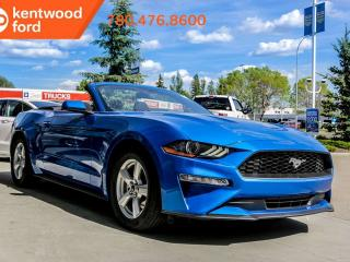 New 2019 Ford Mustang I4 for sale in Edmonton, AB