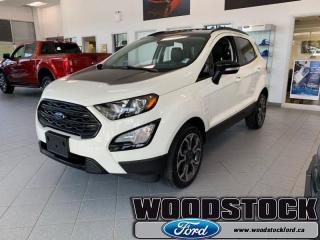 New 2019 Ford EcoSport SES 4WD  - Leather Seats - Climate Control for sale in Woodstock, ON