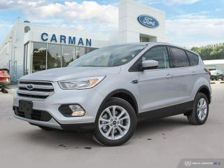 New 2019 Ford Escape SE for sale in Carman, MB