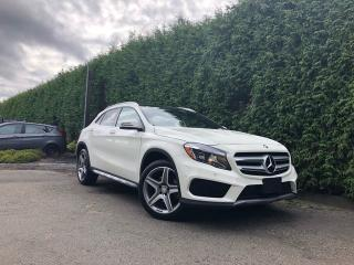Used 2017 Mercedes-Benz GLA GLA 250 4dr AWD 4MATIC for sale in Surrey, BC