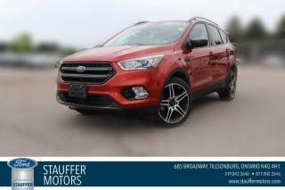 Used 2019 Ford Escape SEL for sale in Tillsonburg, ON