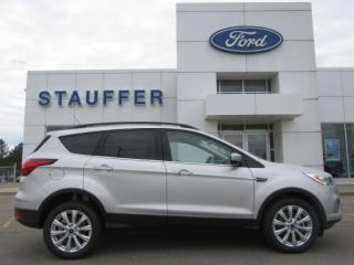New 2019 Ford Escape SEL for sale in Tillsonburg, ON