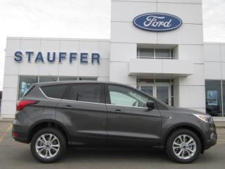 New 2019 Ford Escape SE for sale in Tillsonburg, ON