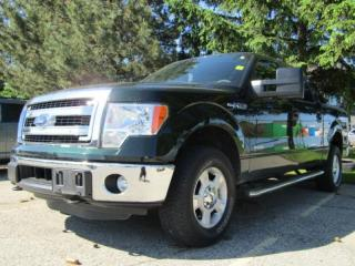 Used 2014 Ford F-150 XLT for sale in Tillsonburg, ON