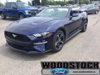 New 2019 Ford Mustang EcoBoost  - Navigation for sale in Woodstock, ON