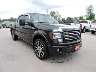Used 2010 Ford F-150 Harley-Davidson for sale in Gorrie, ON