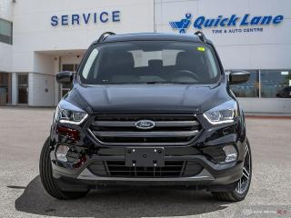 New 2019 Ford Escape SEL for sale in Winnipeg, MB