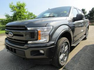 New 2019 Ford F-150 XLT for sale in Tillsonburg, ON