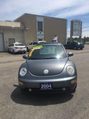 Used 2004 Volkswagen New Beetle GLS for sale in Kitchener, ON