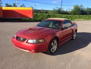 Used 2001 Ford Mustang Cabriolet 2 portes - GT for sale in Quebec, QC
