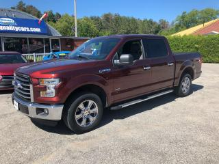 Used 2016 Ford F-150 XLT for sale in Flesherton, ON