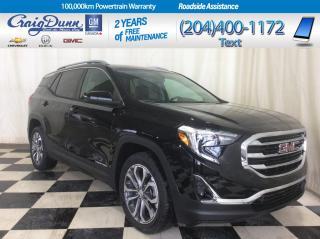 Used 2019 GMC Terrain * SLT All Wheel Drive * DRIVER ALERT PACKAGE * for sale in Portage la Prairie, MB