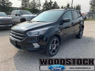 New 2019 Ford Escape SEL 4WD  - Heated Seats -  Power Tailgate for sale in Woodstock, ON