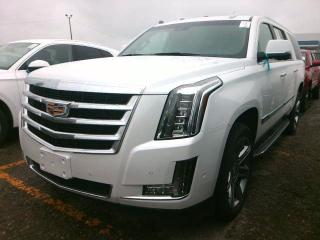 Used 2019 Cadillac Escalade ESV Luxury | ESV | LOADED for sale in BRAMPTON, ON