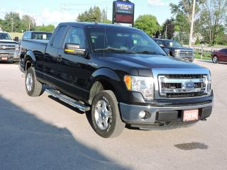 Used 2014 Ford F-150 XLT. 5.0L V8. 4X4. Seating for 6 for sale in Gorrie, ON