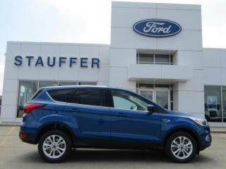 Used 2019 Ford Escape SE for sale in Tillsonburg, ON