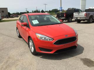 Used 2016 Ford Focus SE | Sedan| One Owner | Heated Seats for sale in Harriston, ON